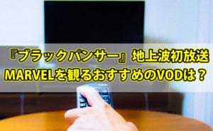 【金ロー】『ブラックパンサー』が地上波初放送!MARVELを観るならおすすめのVODは?